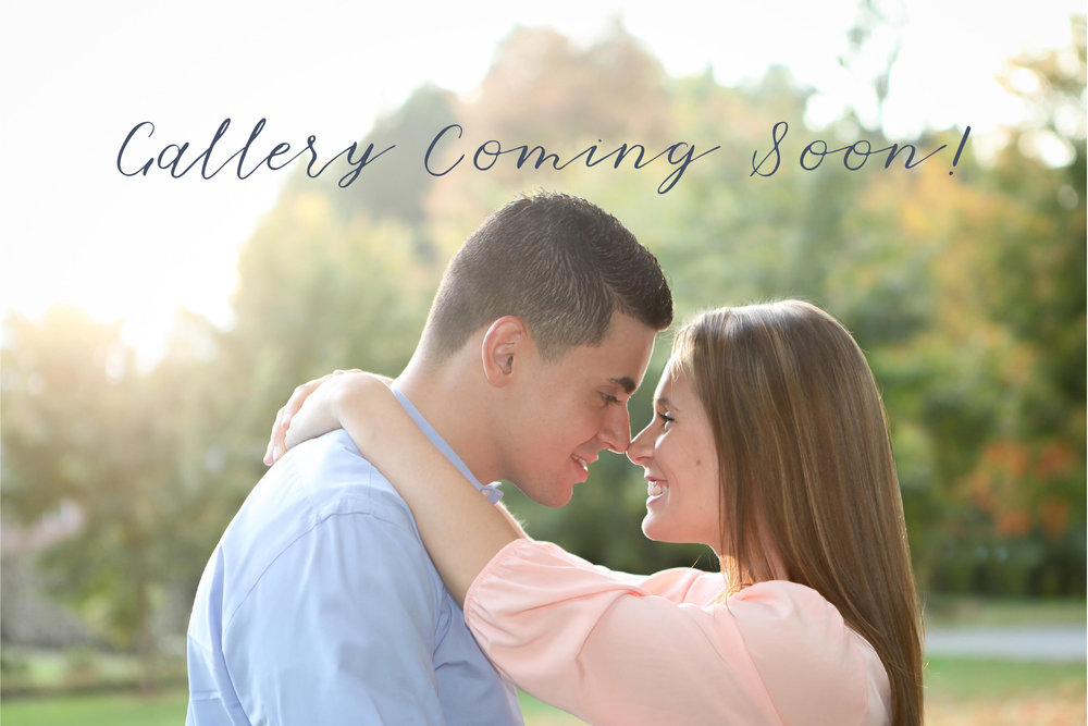 Gina-Gallery-Coming-Soon-4.jpg