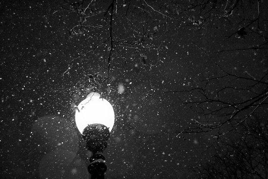 street lamp.jpg