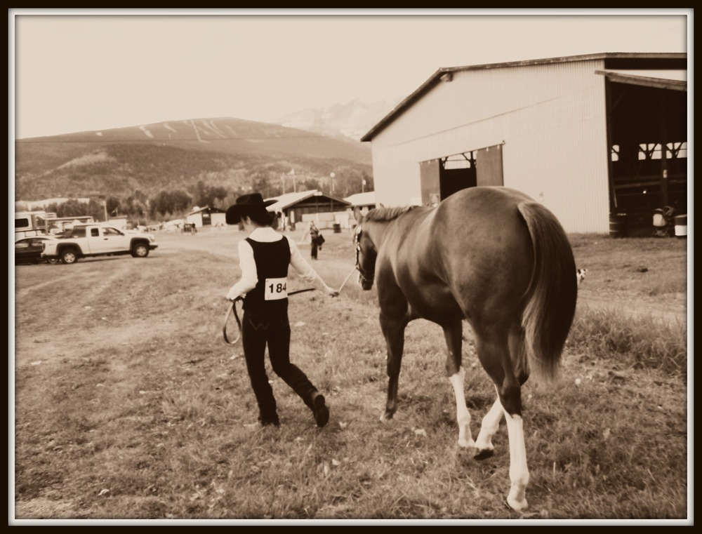 2012 BVX Smithers  Sacred Page 2011 APHA Gelding & Sarah