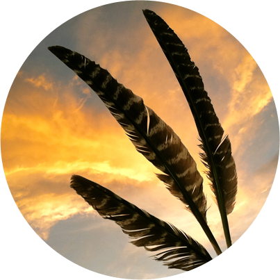 path-feathers.png