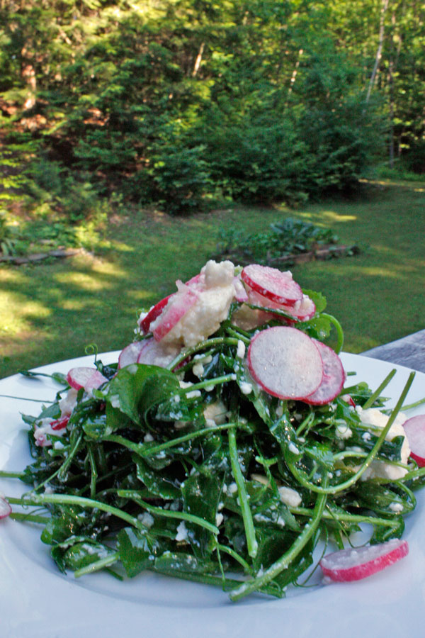 This simple salad is unconscionably delicious!