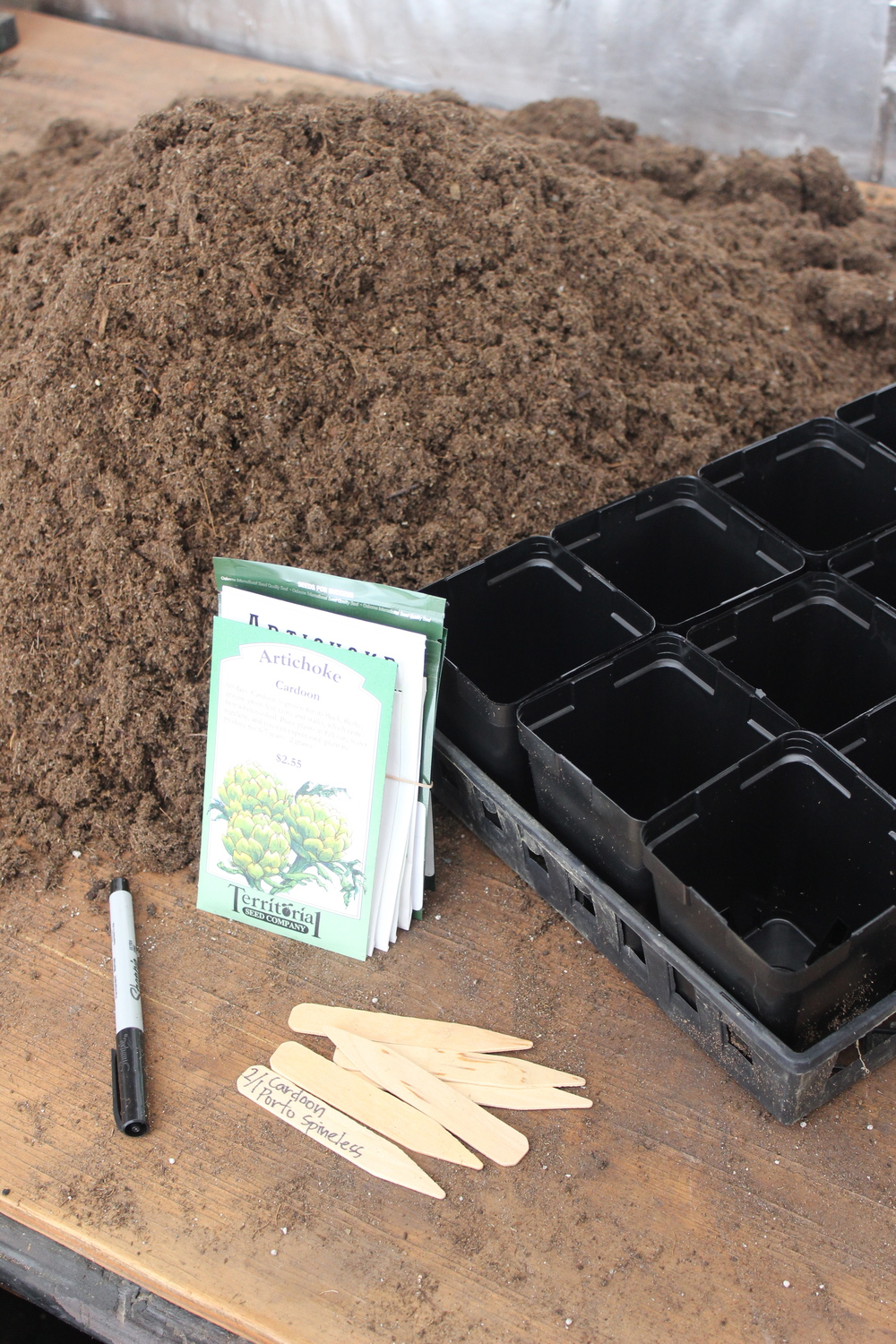 Seeding continues in the greenhouse as spring is right around the corner.