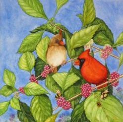 Miriam Sagasti art.jpg
