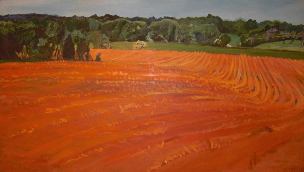 Maple View Red Clay Fields REDUX (2).jpg