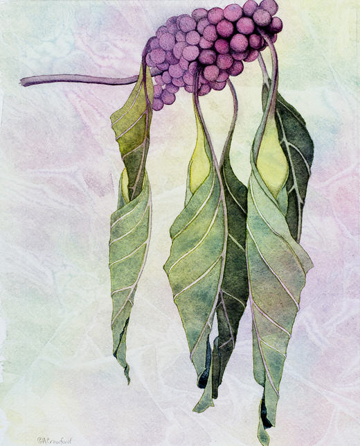 Jade by Anna Crawford