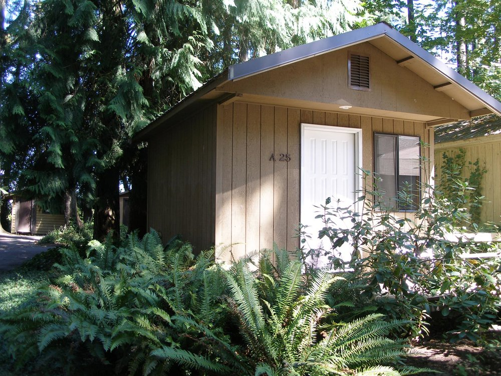 woodland-cabin-1.jpg