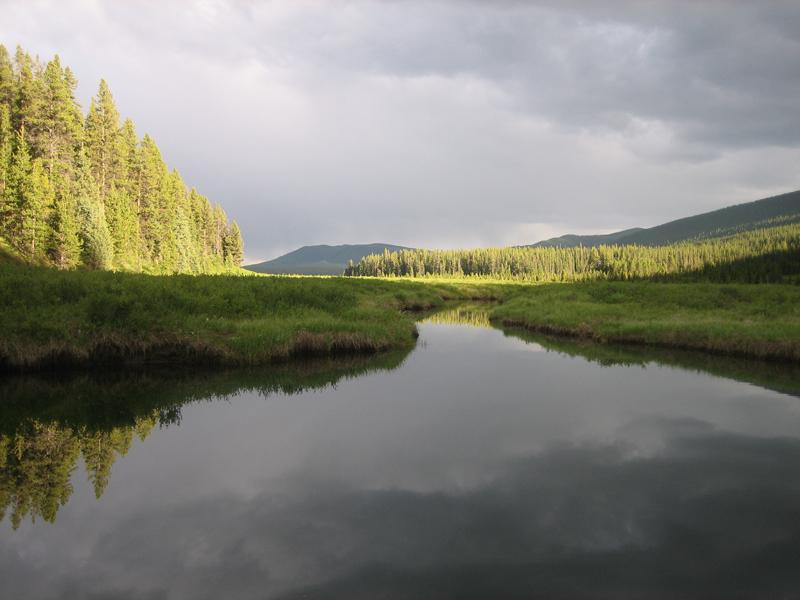 BASIN_Environmental_2012_041.JPG