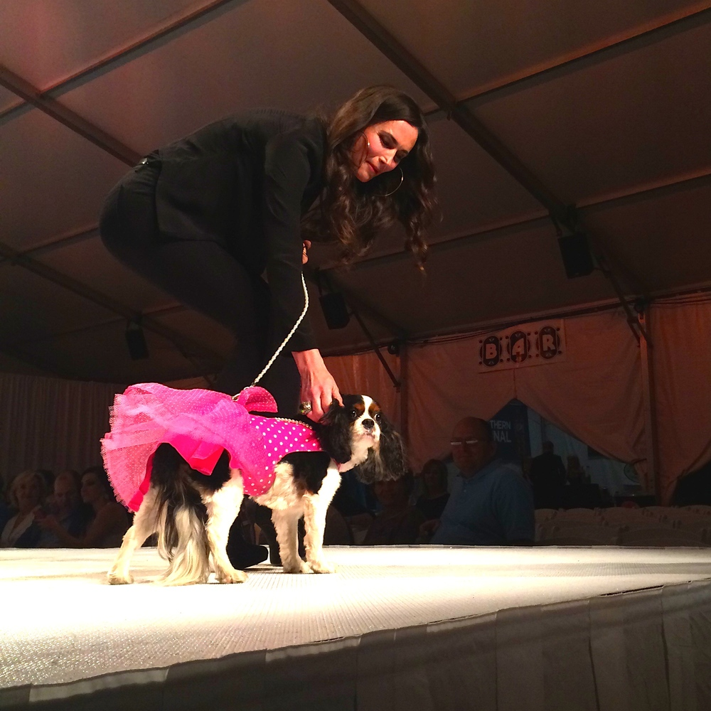 Lola worked the runway in her pink polka dot dress, much to the delight of the audience!