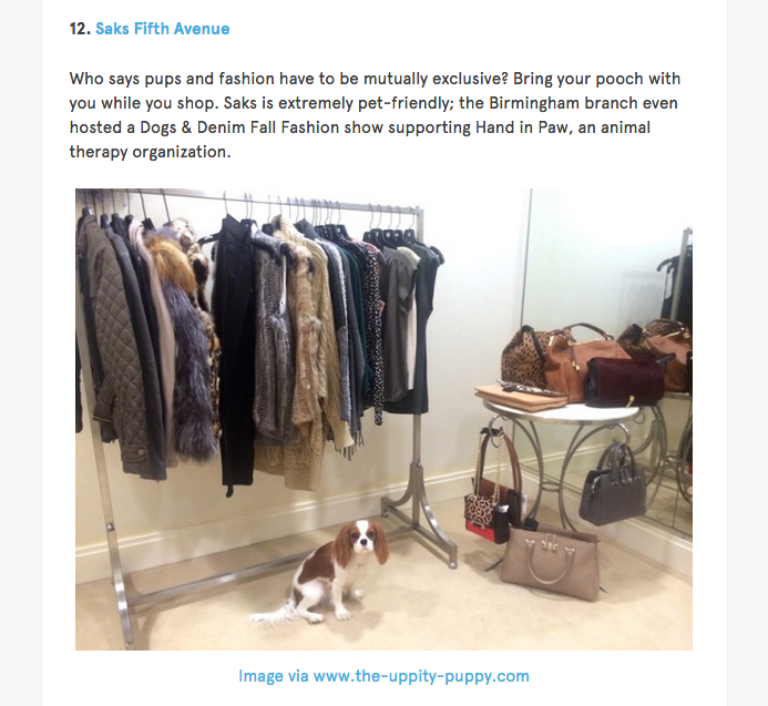 BarkPost The Uppity Puppy Saks Fifth Avenue