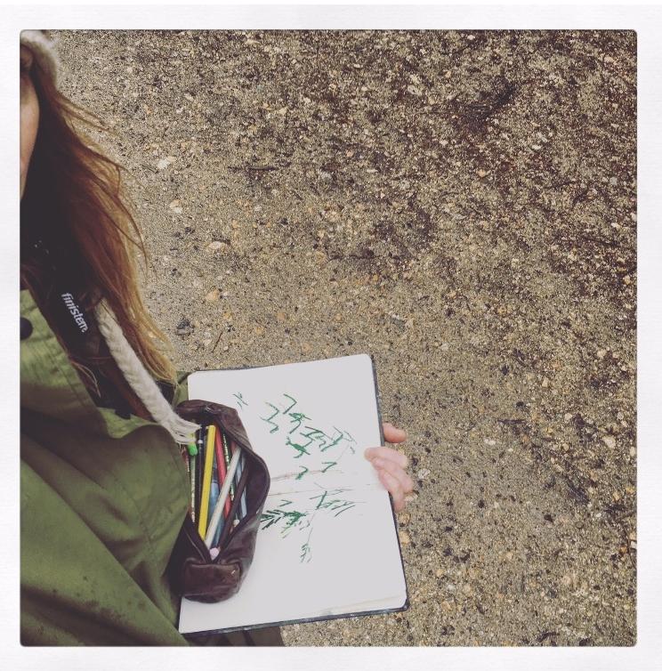 Sketching at Idless Woods