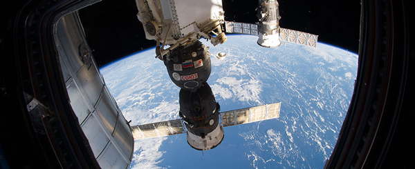 NASA-genelab-4.jpg
