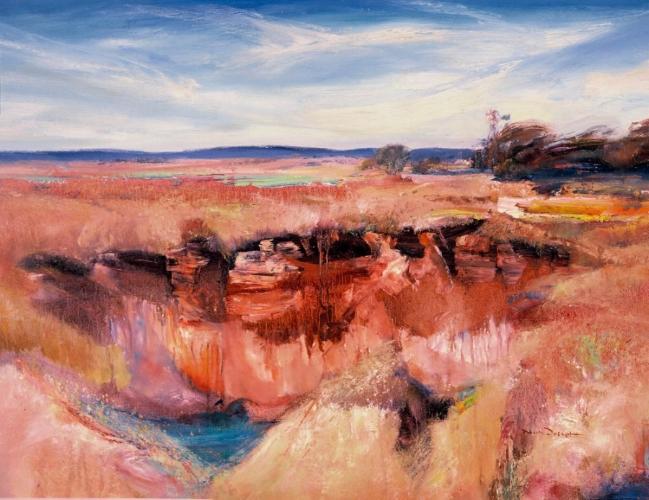 Blue Gully, Broken Hill