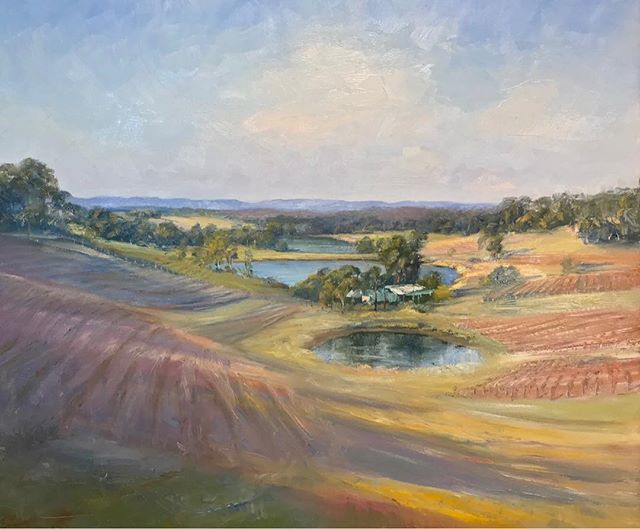 'Hunter Valley' Oil on Board - 93 x 72cm  Neale Joseph Wine Australia is NOW SHOWING!  Central Coast Grammar School Performing Arts Centre, Arundel Road Erina Heights | Daily 10am-4pm  www.nealejoseph.com
