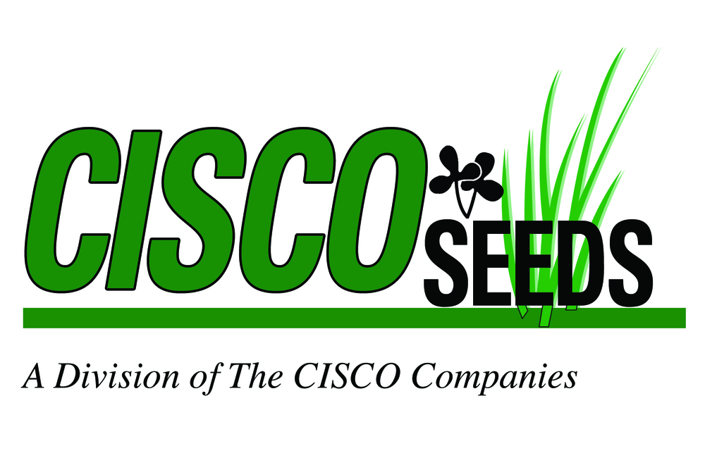 CISCO Seeds Logo.jpg