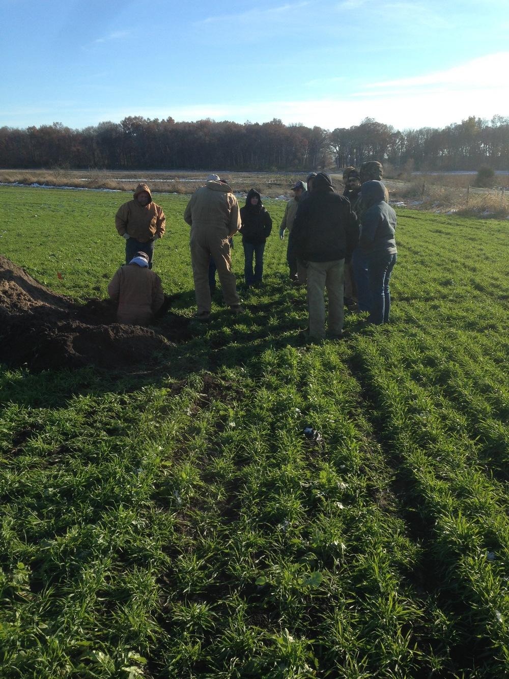Hans Kok, Barry Fisher, and a group of farmers gathered around the soil pit to check on root penetration.