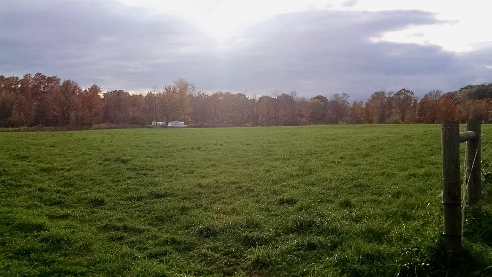 Jeremy Sweeten Farm Pasture.jpg