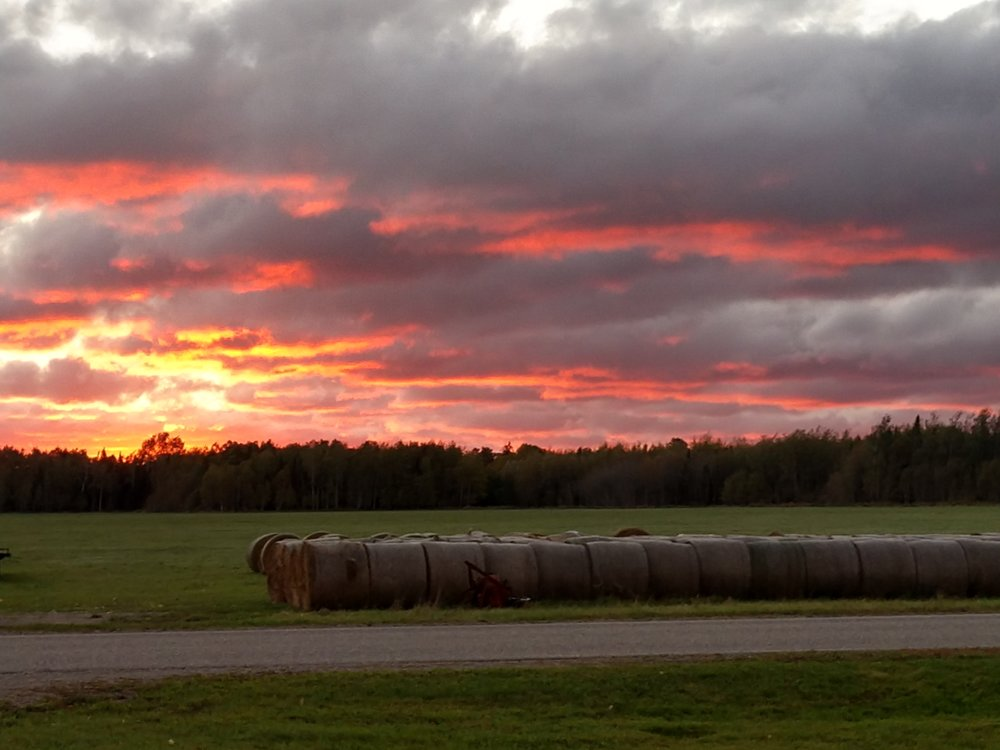 cover photo - orange sky over hay bales.jpg