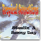 Tropical Sensations Steelin' Sunny Day