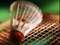 Badminton birdy on strings.JPG