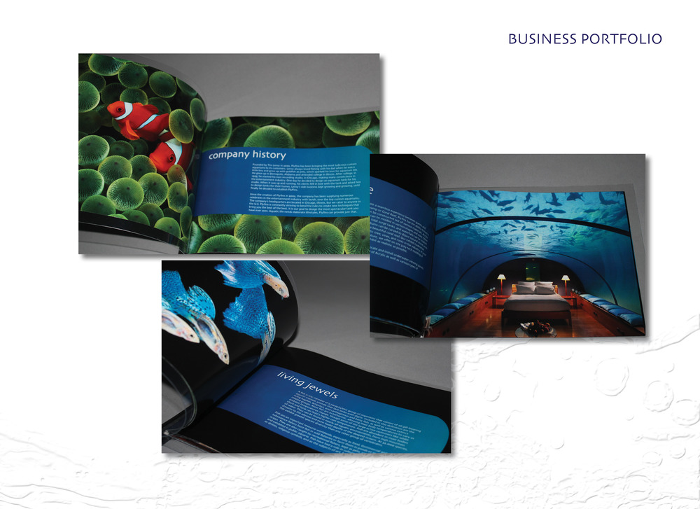FlyfinsBook7.jpg