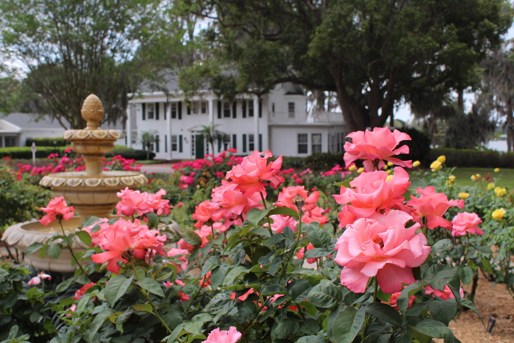 Cypress Grove Estate