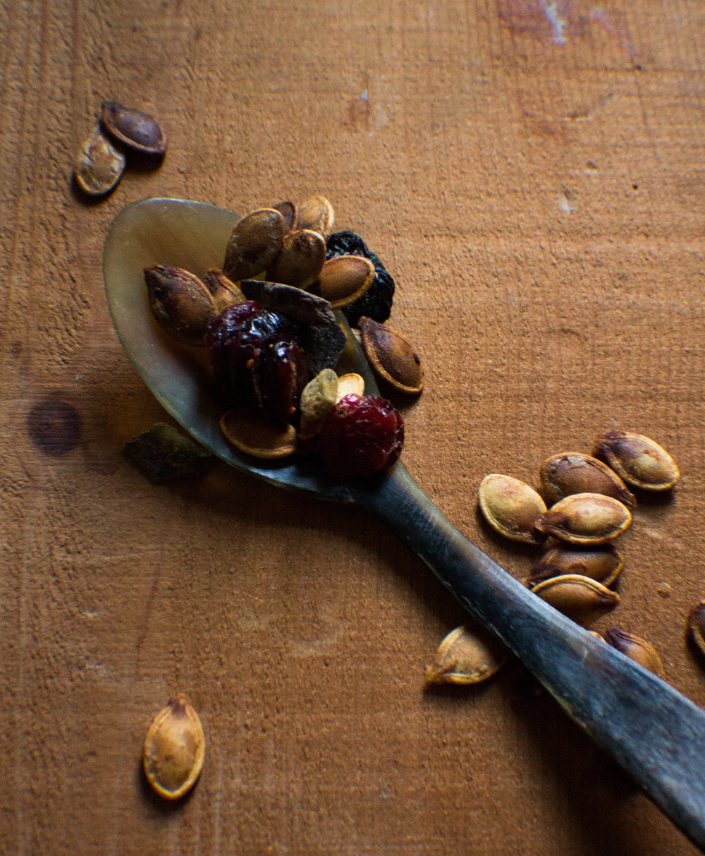 Pumpkin Seed Trail Mix {Pedantic Foodie}