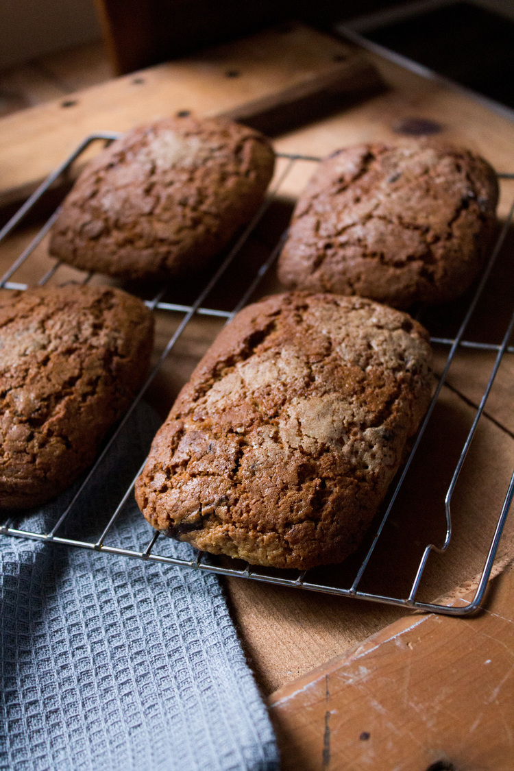 Gingerbread Scones with Dark Chocolate and Orange