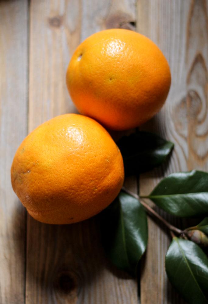 Orange Glazed Bundt with Dark Chocolate & Pecans {Pedantic Foodie}