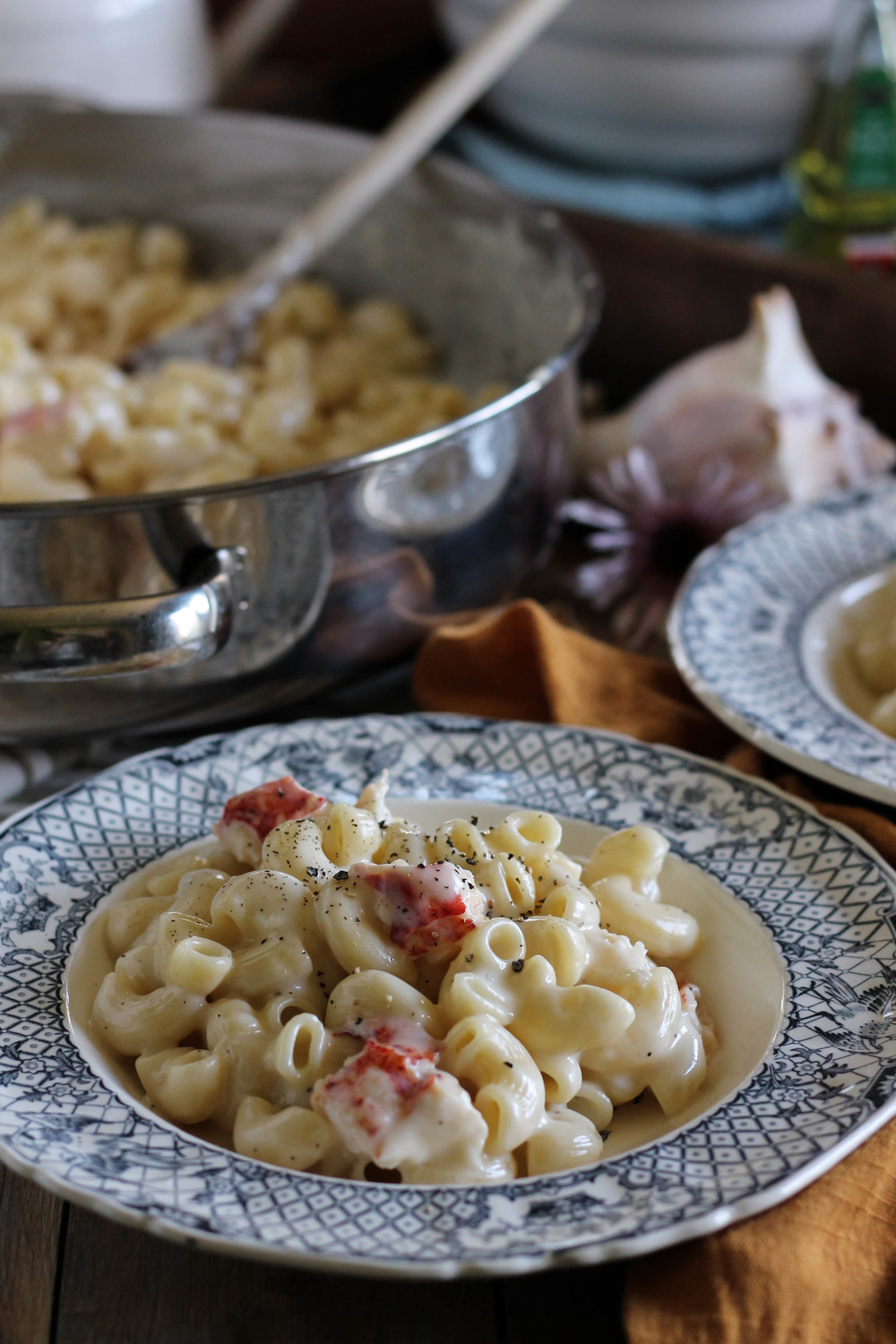 Truffle & Brie Macaroni and Cheese with Lobster Tail {Pedantic Foodie}