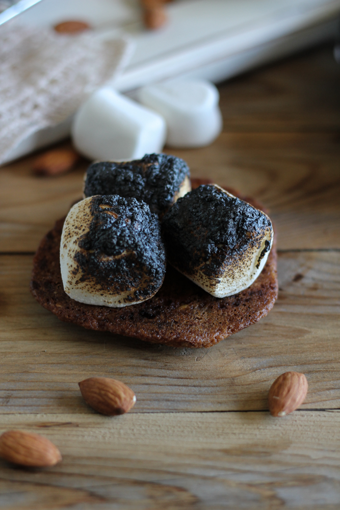 Sea Salt & Almond Chocolate Chip Cookie Peanut Butter S'mores {Pedantic Foodie}