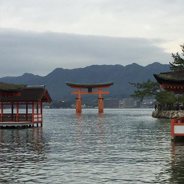 Beauty&serenity #itsukushimashrine #厳島神社 #世界遺産