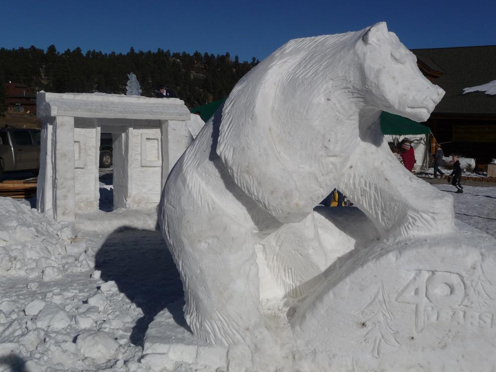 thomas-barlow_snow_polarbear40yrs.jpg