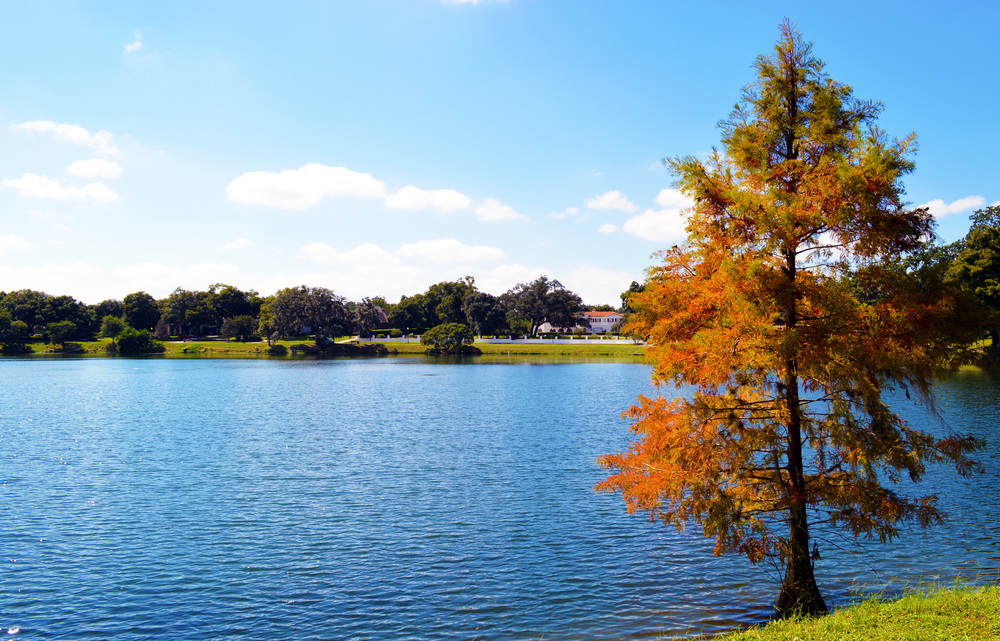 Lake Ivanhoe near downtown Orlando