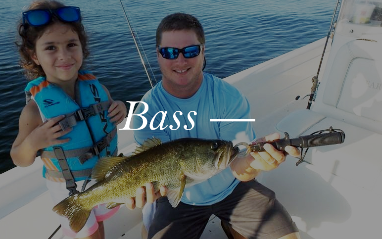 Hundreds of lakes dot the Orlando landscape. Lucky for you, we know which ones are holding your next trophy bass. Come out with us and see what Orlando bass fishing is all about.