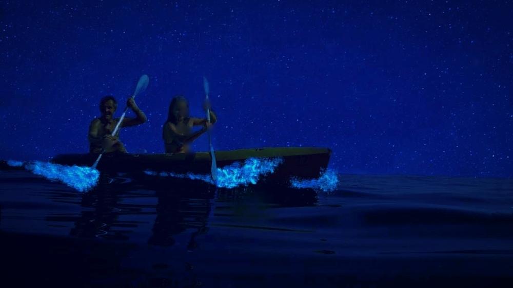 Kayaking-Bioluminescence.jpg