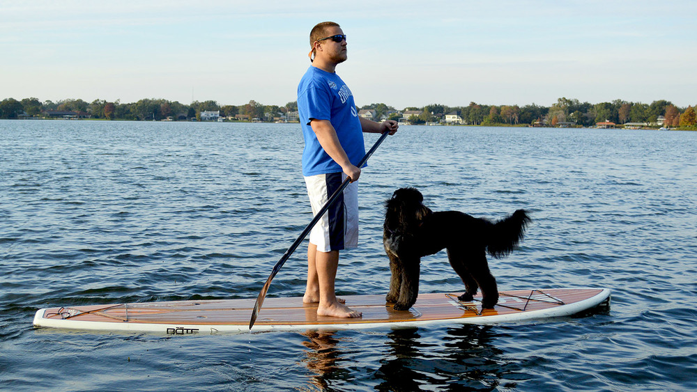 Puppy Paddle Orlando.jpg
