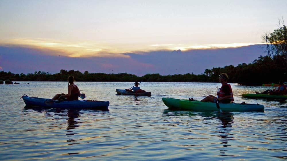Get-Local-Florida-bioluminescence-Tour.jpg