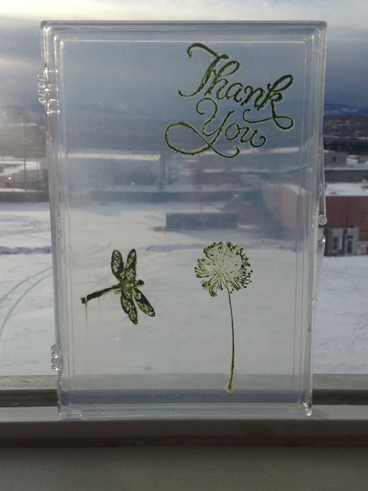 A prototype greeting card from Living Ink Technologies of Fort Collins Colorado.