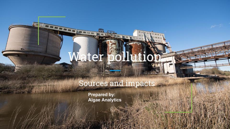 Pollution presentation.jpg