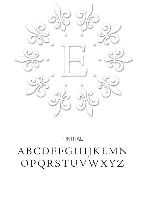 EMB-TypeFace-EMB3412.jpg