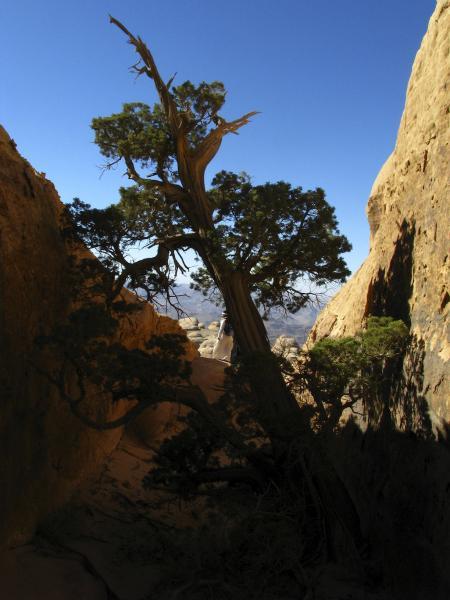 Jebel Rum, Wadi Rum