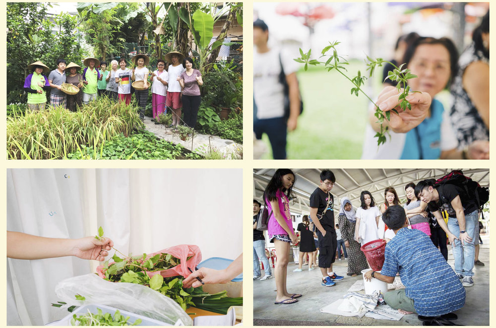 (Top left) Moulmein Goldhill Garden N C Community Garden, Photo: Angel Ang; (Top right, bottom left) CropShare soup kitchen - world farmers' day edition, Photo: Harriet Koh; (Bottom right) Composting session by TANAH at the Singapore Really Really Free Market 43, Photo: Lawrence Chong