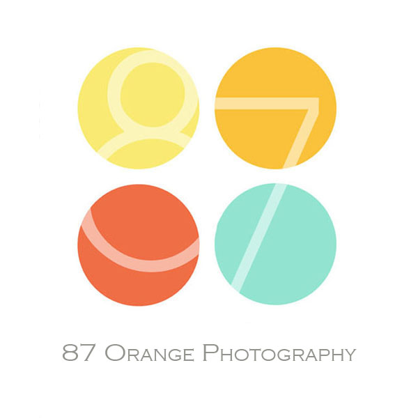 Grand Rapids Photographer | Grand Rapids Photography Studio | 87 Orange Photography