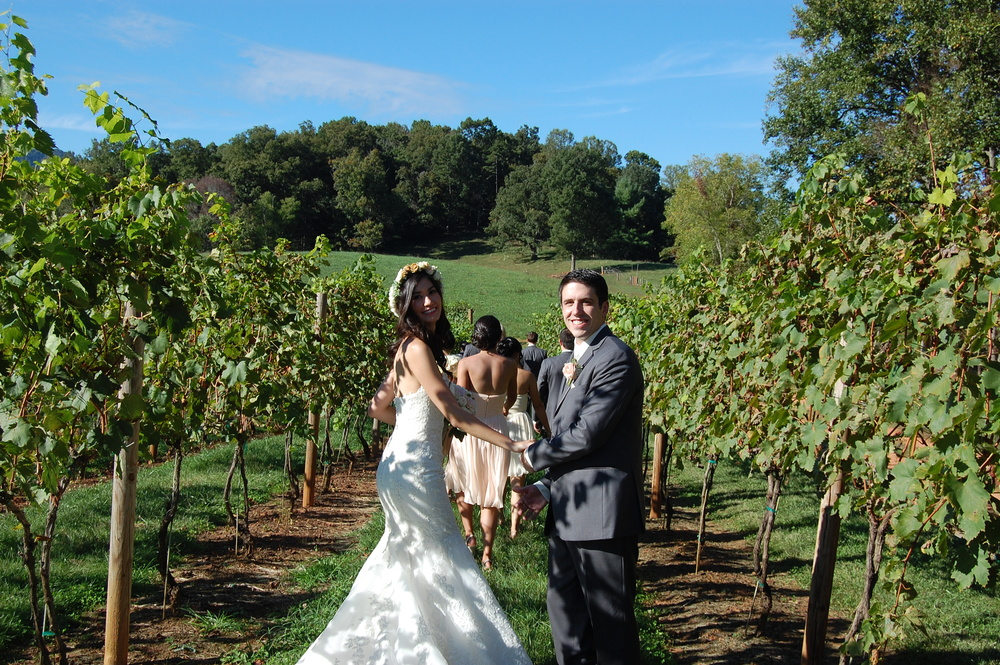 A wedding day stroll through the vineyard.