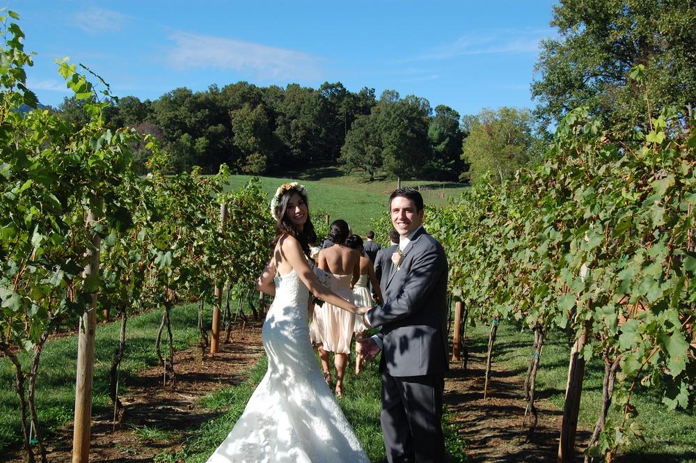 A wedding day stroll through the vineyard.
