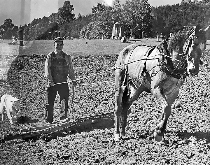 Addison Farmer (1977) plowing