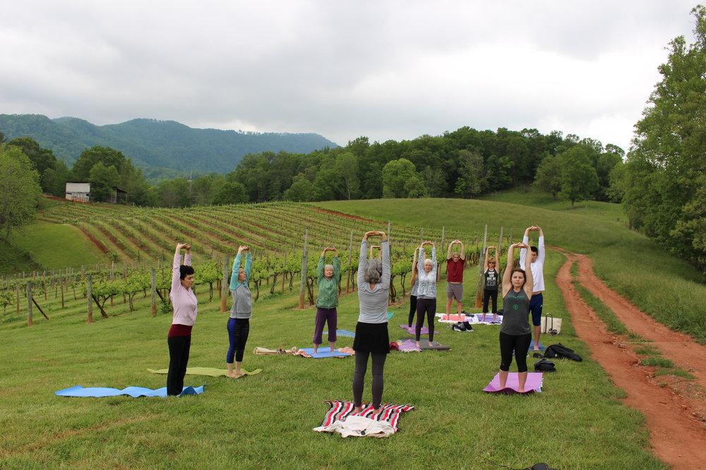 yoga in the vineyard 2017.JPG