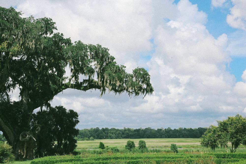 South Carolina-29.jpg