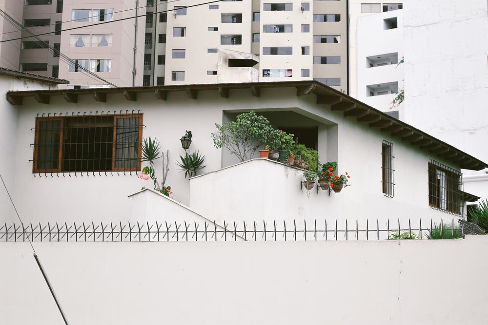 South America-5241.jpg
