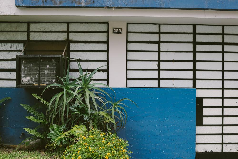 South America-5175.jpg